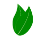 eco-friendly-leaves.png
