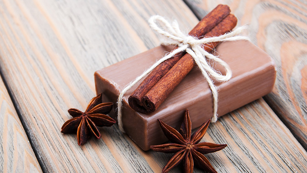 Bar of hand made soap with Cinnamon and Star anise tied with string