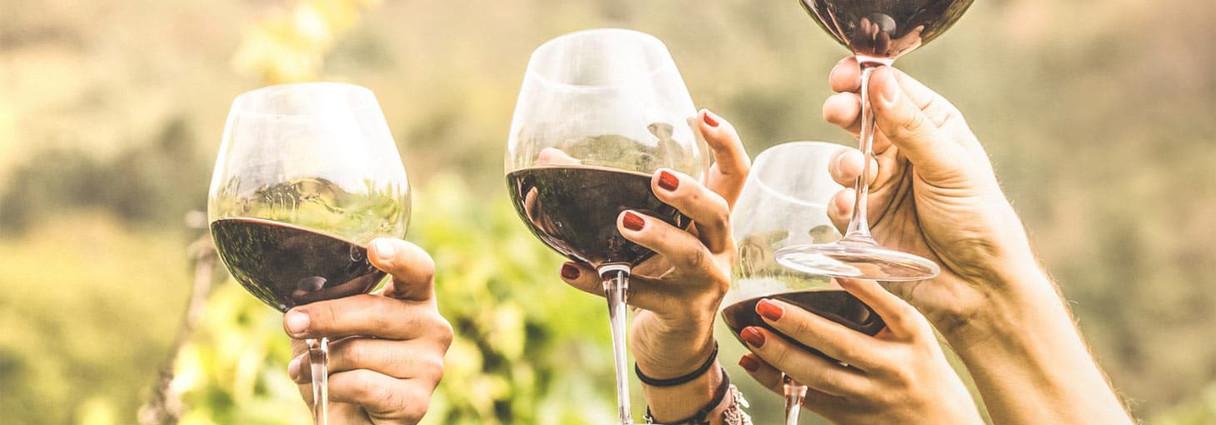 apple-hill-wine-tasting-tours-slide.jpg