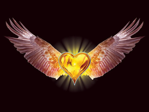 WINGS OF HIS HEART