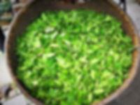 Longjing tea leaves