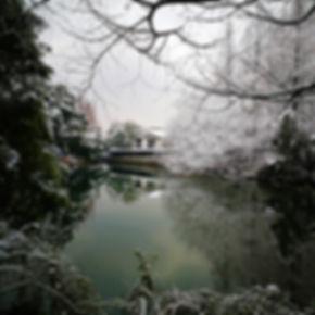 Winter landscape at West Lake