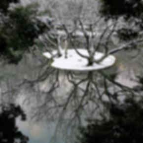 Reflection, Wanilu pond in winter