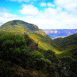 Wollemi Nemzeti Park