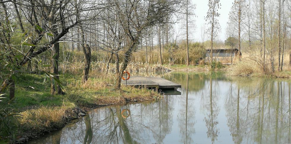 Bird-watching area at Xixi