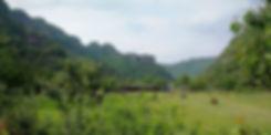 Meadow at Nineteen peaks