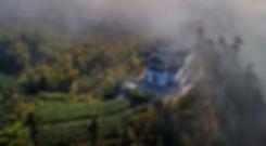 Jing-hegy, teaültetvények