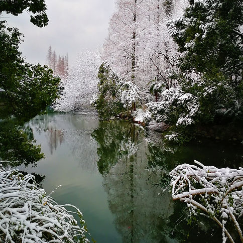 Winter landscape at West Lake