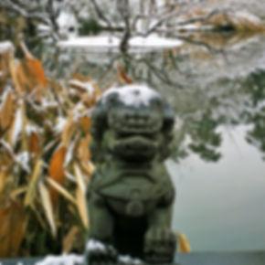 Winter at Wanilu pond