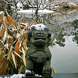 Wanilu-pond in winter, Hangzhou