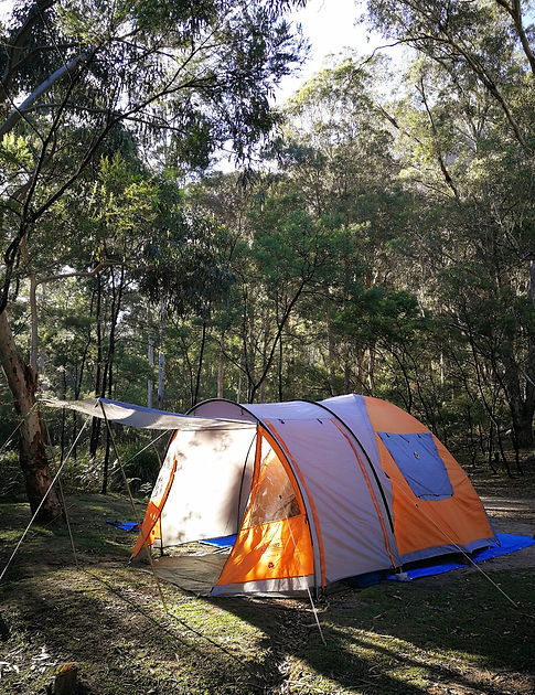 Early morning at Newnes camping