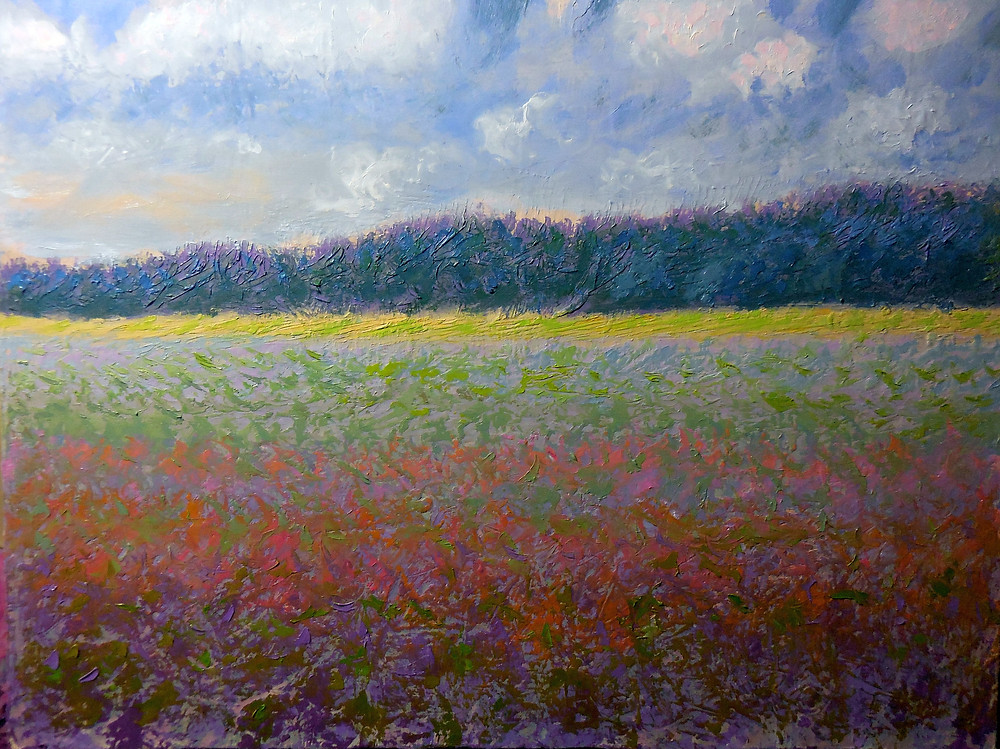 Wildflower Meadow, Errol McKinson