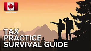 Tax Practice Survival Guide - Flag 1280x