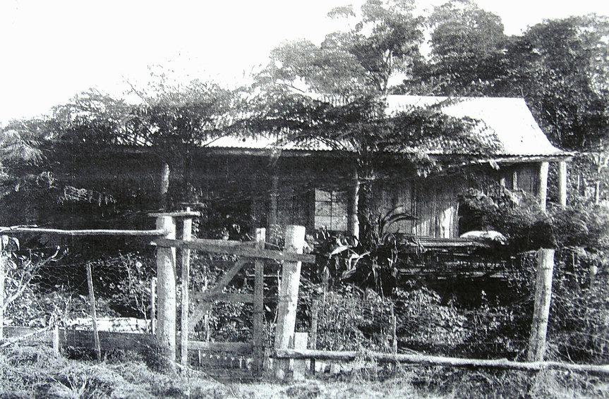 Later house.jpg