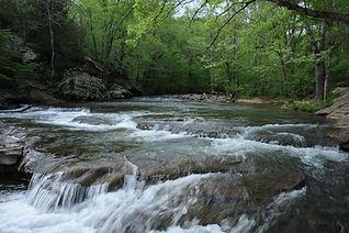 turkey creek.jpeg