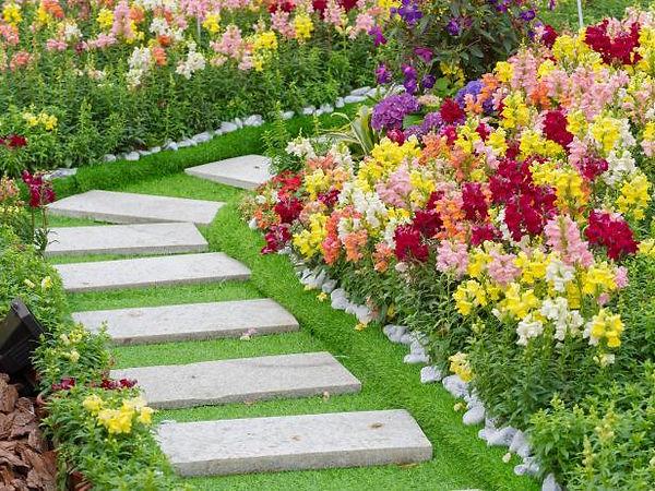 تنسيق حدائق بالكويت
