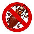 شركات مكافحة حشرات وقوارض