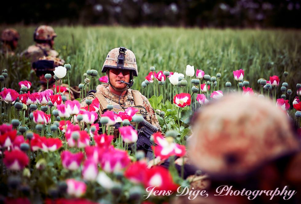 Copy of afghan_1470.jpg
