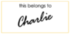 Charlie LOGO WIDE Outlines small.png