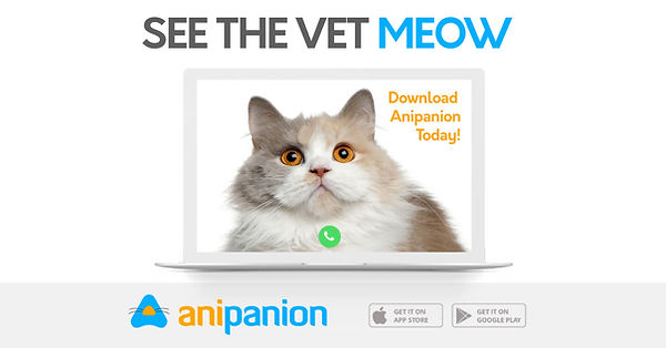 Anipanion Social Media Post 2.jpg