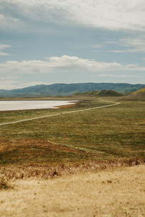 Landscape Photography, Photography, Carrizo Plain National Monument, California, Central Coast, Wild Flowers, Spring, Camping,