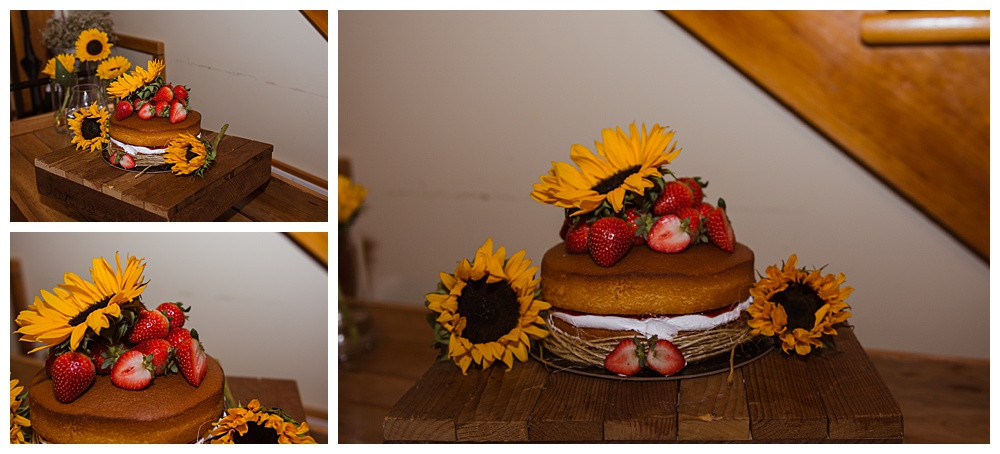 Wedding Cake, Temples Sugar Bush, Ottawa Wedding Photographer, Ottawa Boudoir Photographer