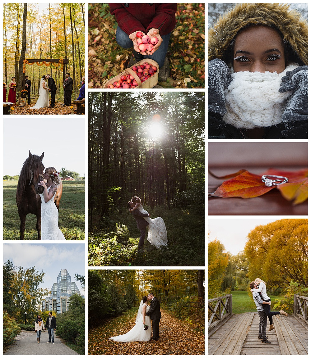 Top 9 2018, Ottawa Photographer, Ottawa Wedding Photographer, Ottawa Boudoir Photographer