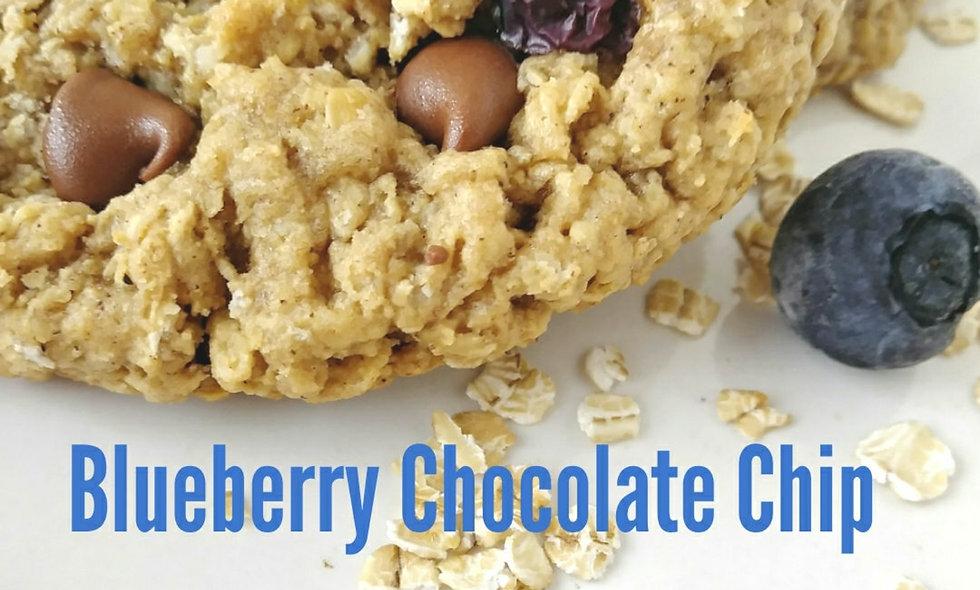 6 Count Blueberry Chocolate Chip Oatmeal  Large Size Awesome Oat Gourmet Cookies