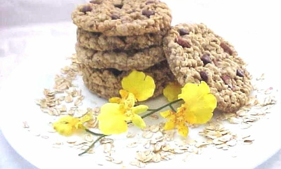 Pecan Oatmeal Assortment  Awesome Oat Cookies 8 Count Fresh Baked Gourmet Cookie