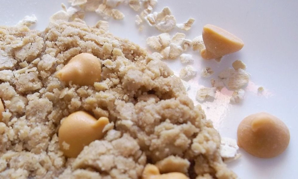Butterscotch Oatmeal Gourmet Cookie Gift   12 Awesome Oat Cookies