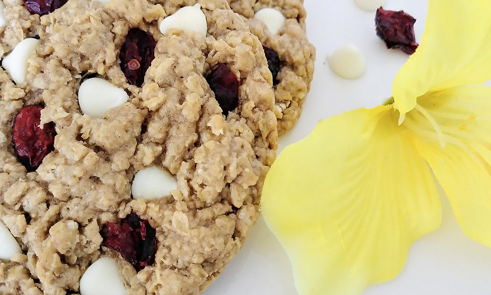 Cranberry White Chocolate Chip Oatmeal 12 Large Gourmet Awesome Oat Cookies