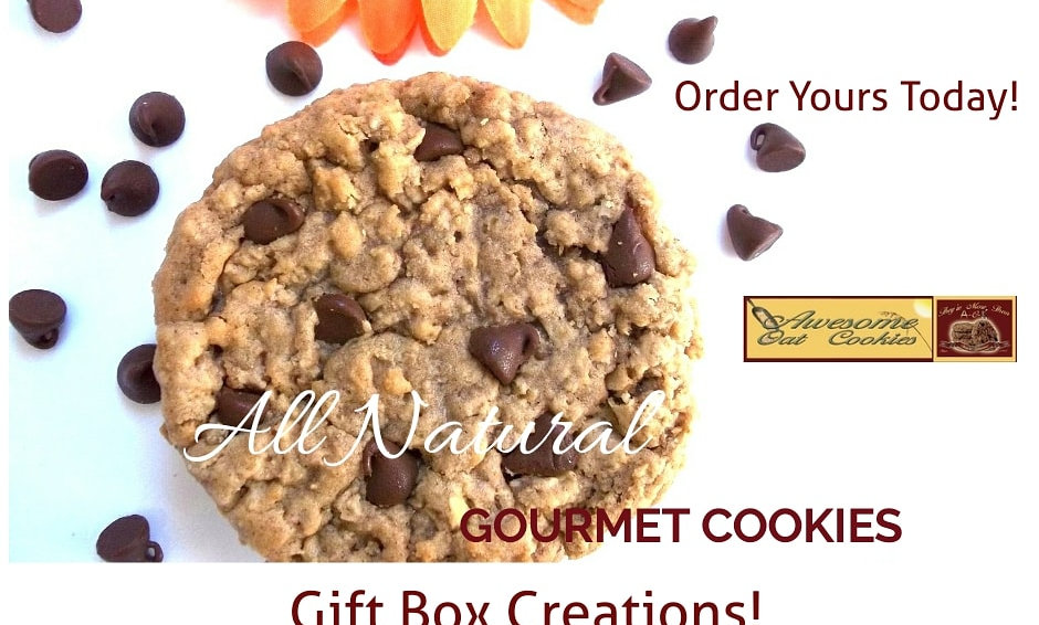 Chocolate Chip Oatmeal Gourmet Cookie Gift | Awesome Oat Cookies Large 12 Count