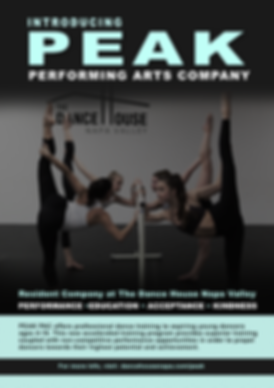Dance House Performing Arts Company Flye