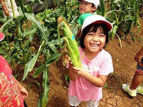 ハレルヤ子ども園児童福祉センター