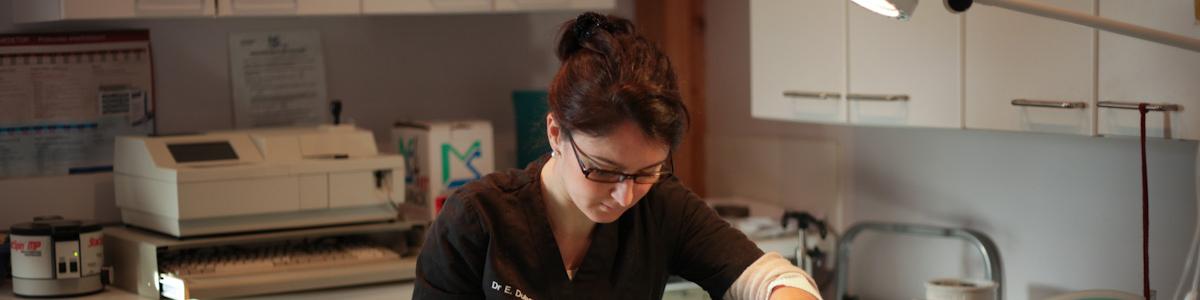 Docteur Elodie Dubar