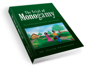 Trial Of Monogamy Softcover