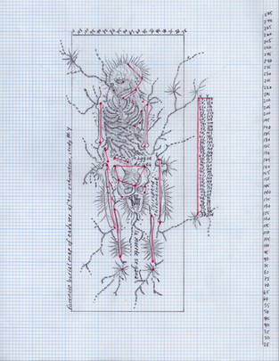 Forensic burial map of cadaver after exhumation, study #4