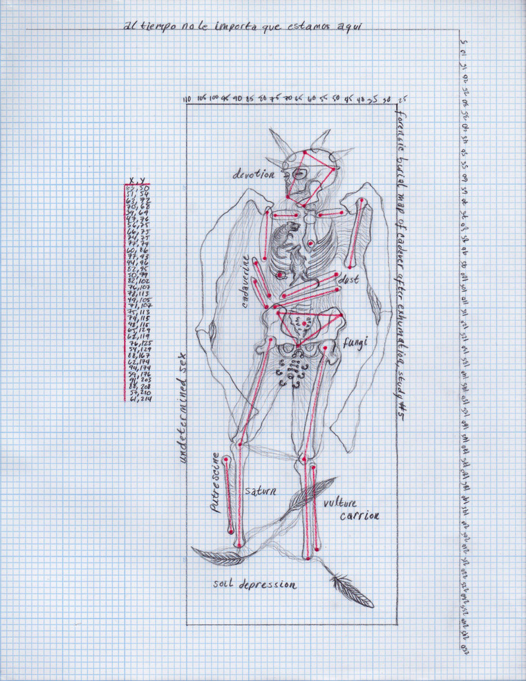 Forensic burial map of cadaver after exhumation, study #5