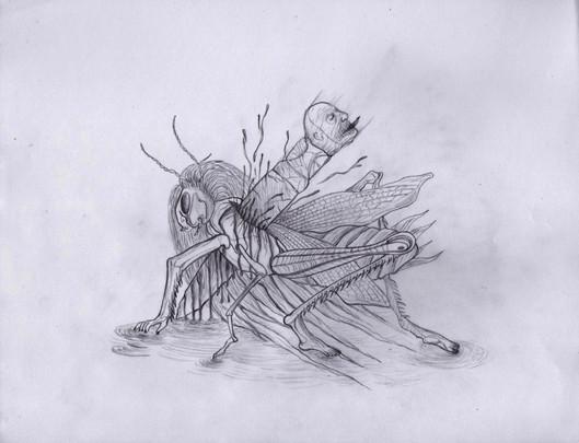Grasshopper pact