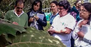 Curso de formación de agentes interculturales para promover el autocuidado en salud