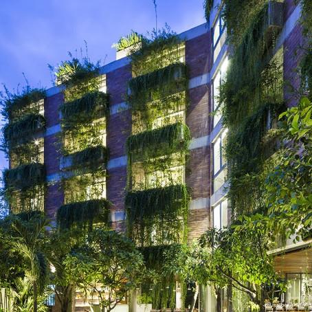 Новый вьетнамский отель привлекает посетителей зеленым фасадом