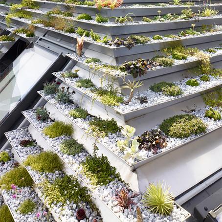 Дом-сад с каскадной зеленой крышей