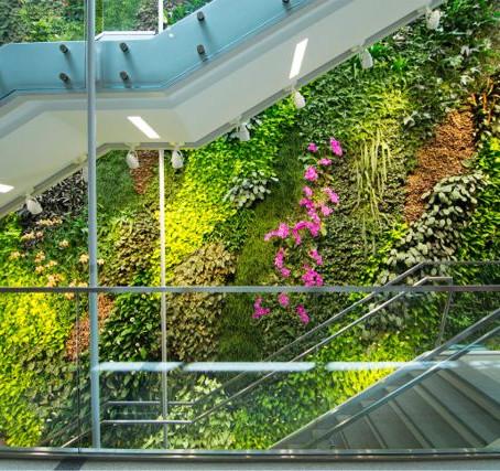 Зеленая стена в три этажа стала предметом ежедневного восхищения посетителей университета