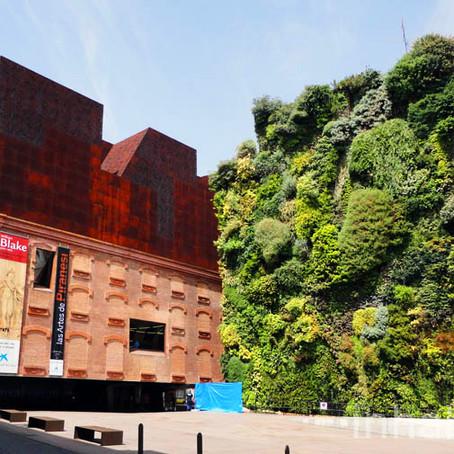 3D зеленая стена в центре Мадрида спасает от жары