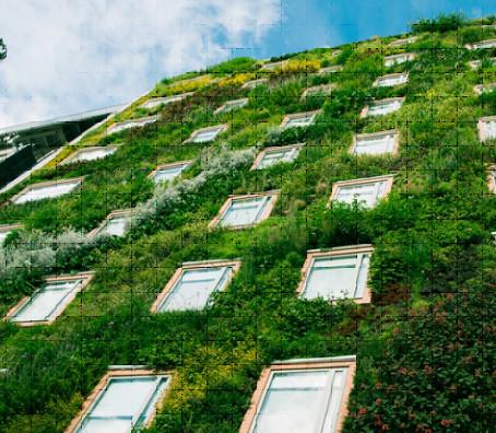 Зеленый фасад отеля стал главной достопримечательностью города