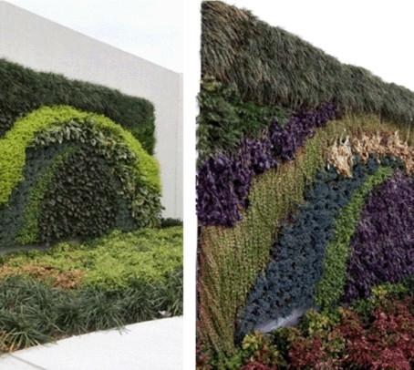 Зеленые стены зимой так же прекрасны?