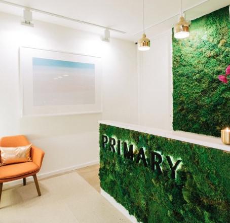Новое рабочее пространство удивляет зеленой стеной