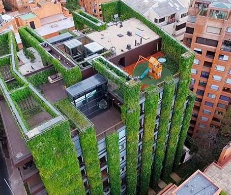 Колумбия представила миру один из самых высоких вертикальных садов в мире