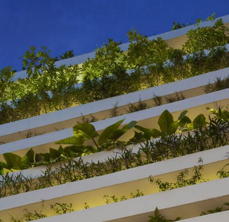 "Дом-сад ""Stacking Green"" покорил Вьетнам"