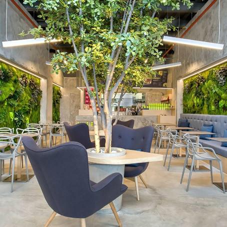 Настоящий лес в ресторане - возможно !